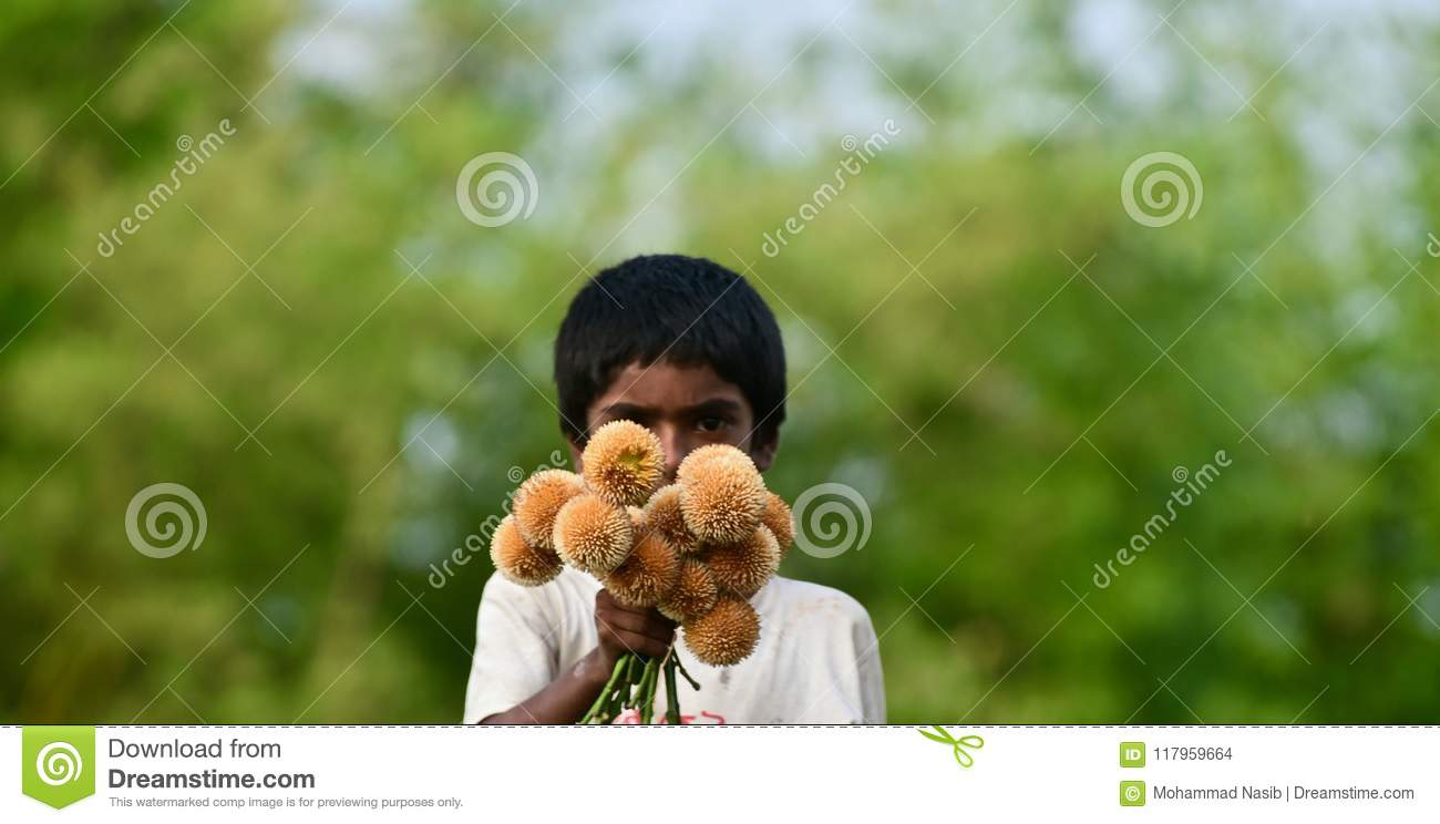Download Young Kid Is Selling Flowers On The Street Isolated Unique Photograph Editorial Stock Image - Image of flowers, holding: 117959664
