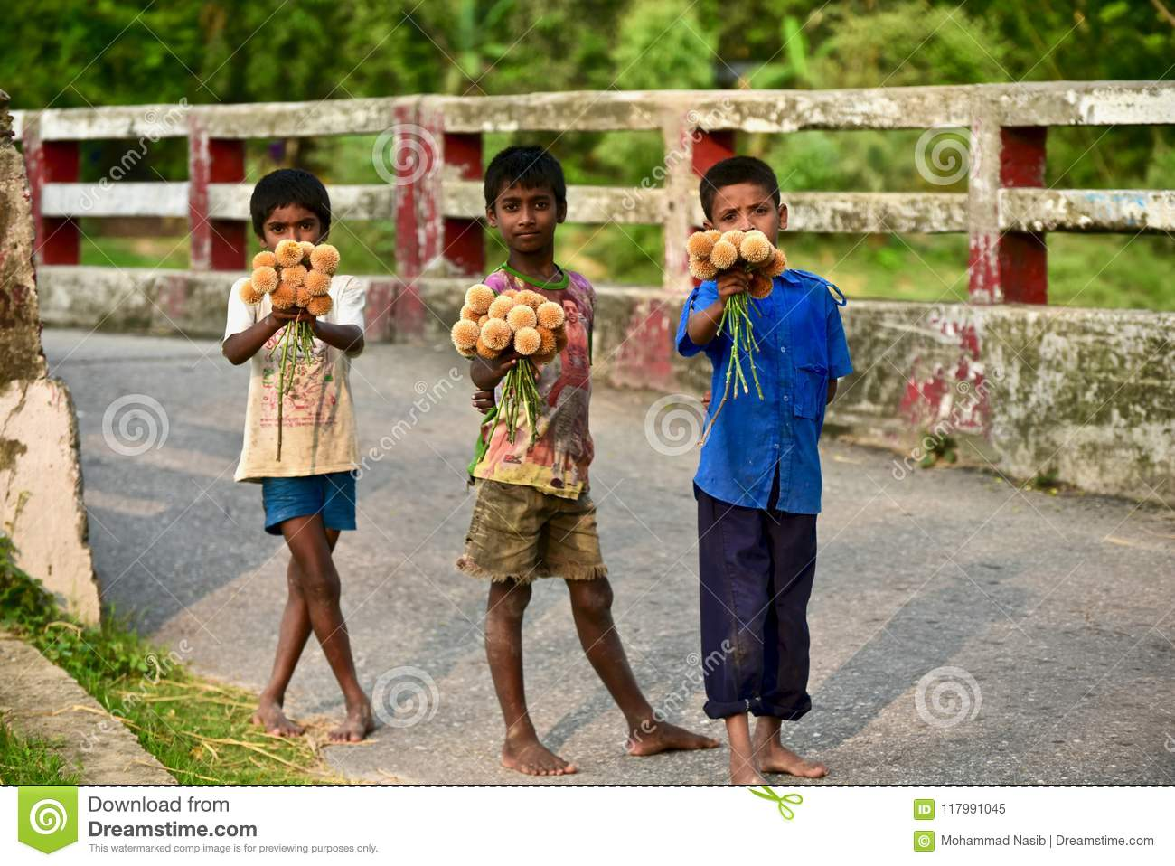 Download Young Kid Is Selling Flowers On The Street - Stop Child Labor Editorial Image - Image of cadamba, background: 117991045