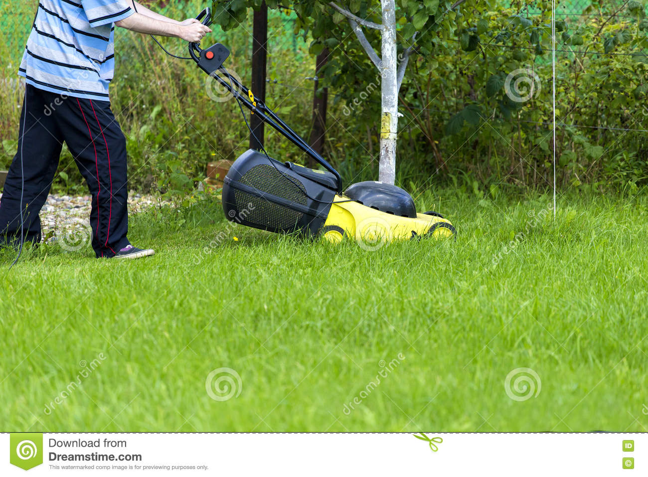 Young man cutting grass with a push lawn mower cartoon for Lawn mower cutting grass