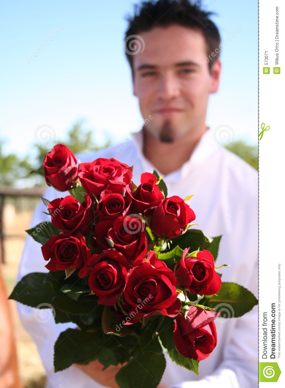 Young Man Holding Out Roses Stock Image Image 573071