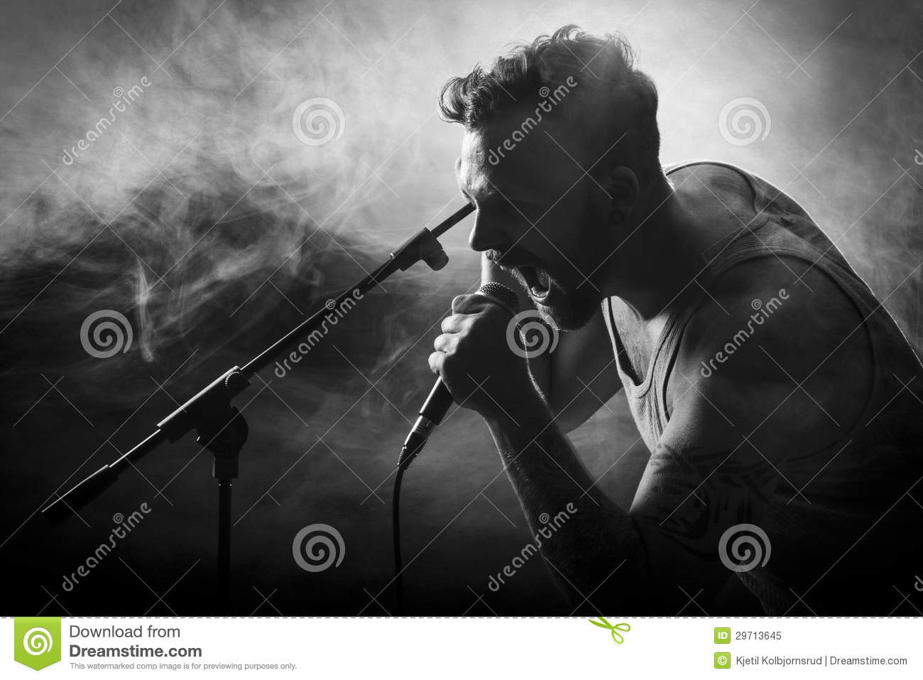 Vocalist In Hardrock Concert Royalty Free Stock Photo ...