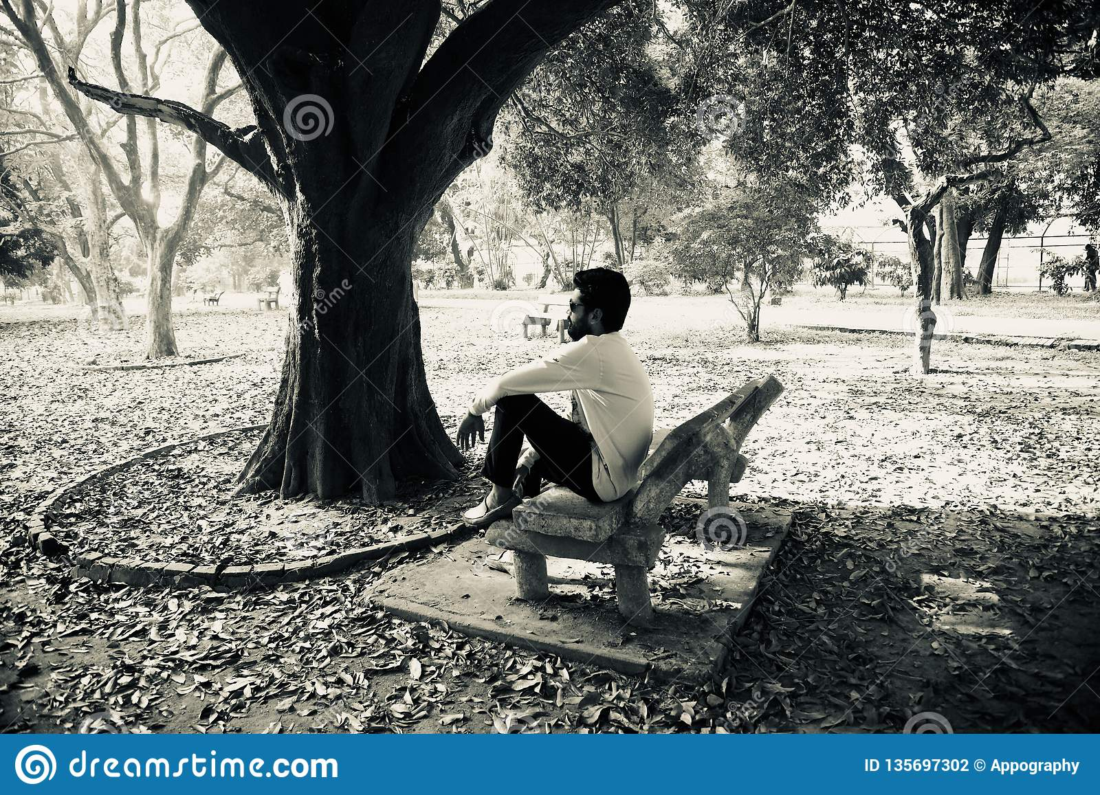 Young man sitting around a place in a park