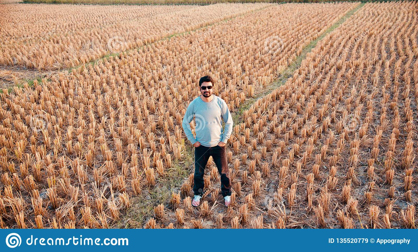 Young man standing in a field unique photo