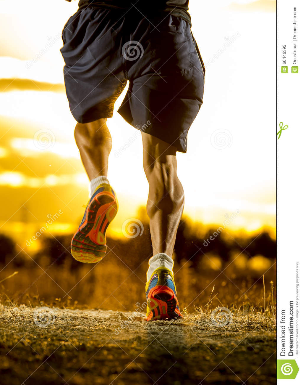 Young Man Strong Legs Off Trail Running At Amazing Summer ...