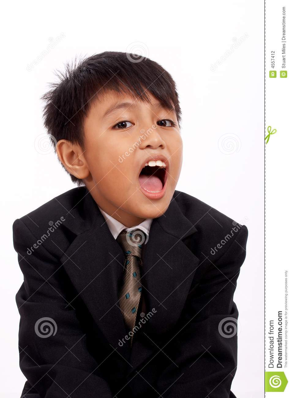 Young Man Yawning Stock Photography - Image: 4557412