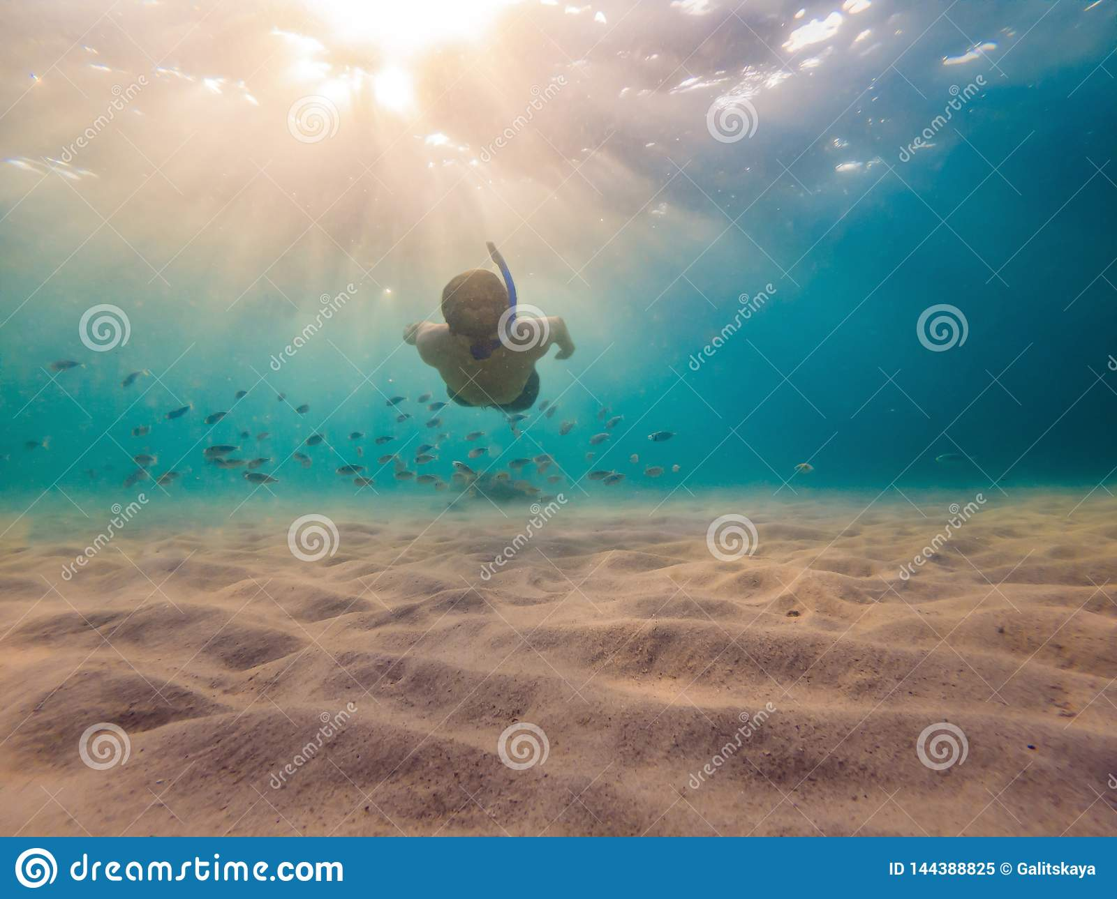 Young men snorkeling exploring underwater coral reef landscape background in the deep blue ocean with colorful fish and