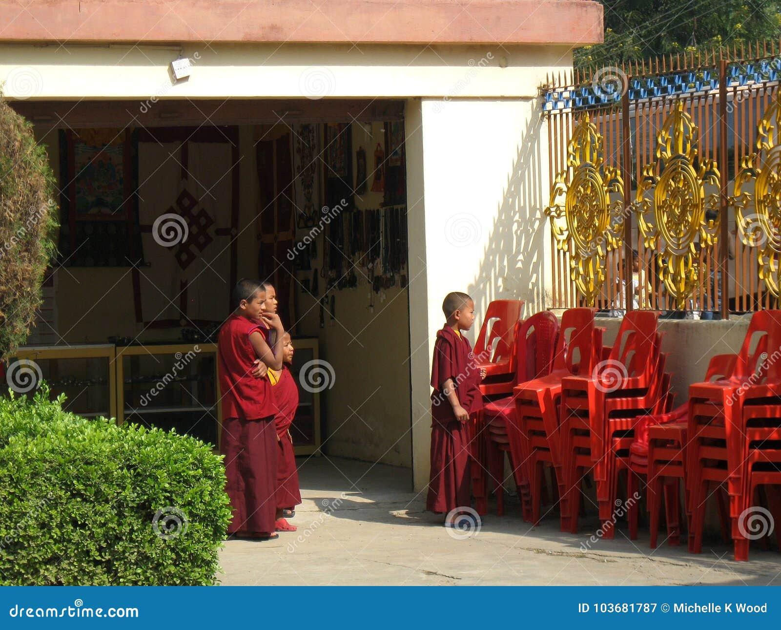 Young monks at Karma Tharjay Chokhorling Tibetan Monastery Bodh Gaya India