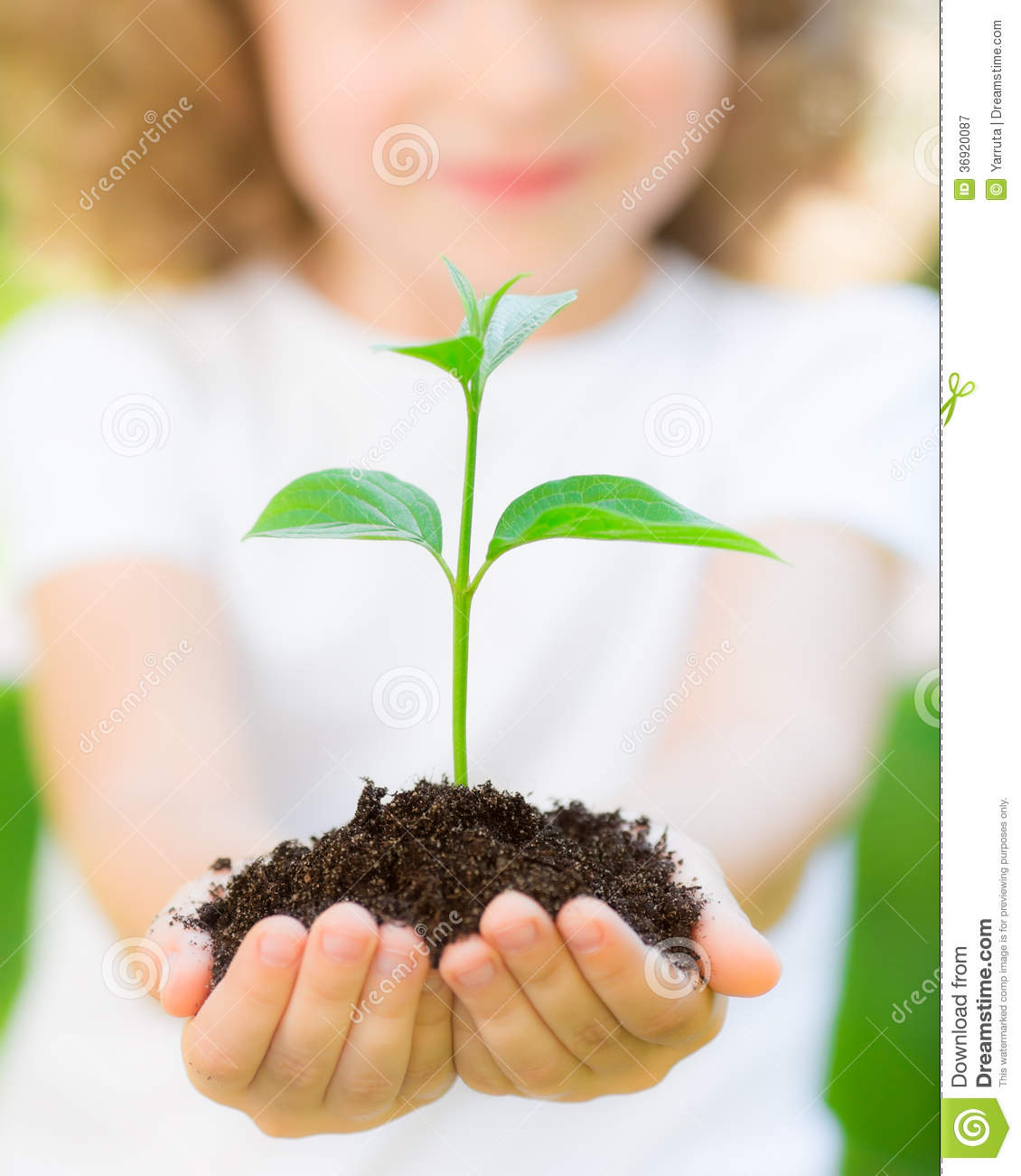 Young Plant Against Green Background Royalty Free Stock ...