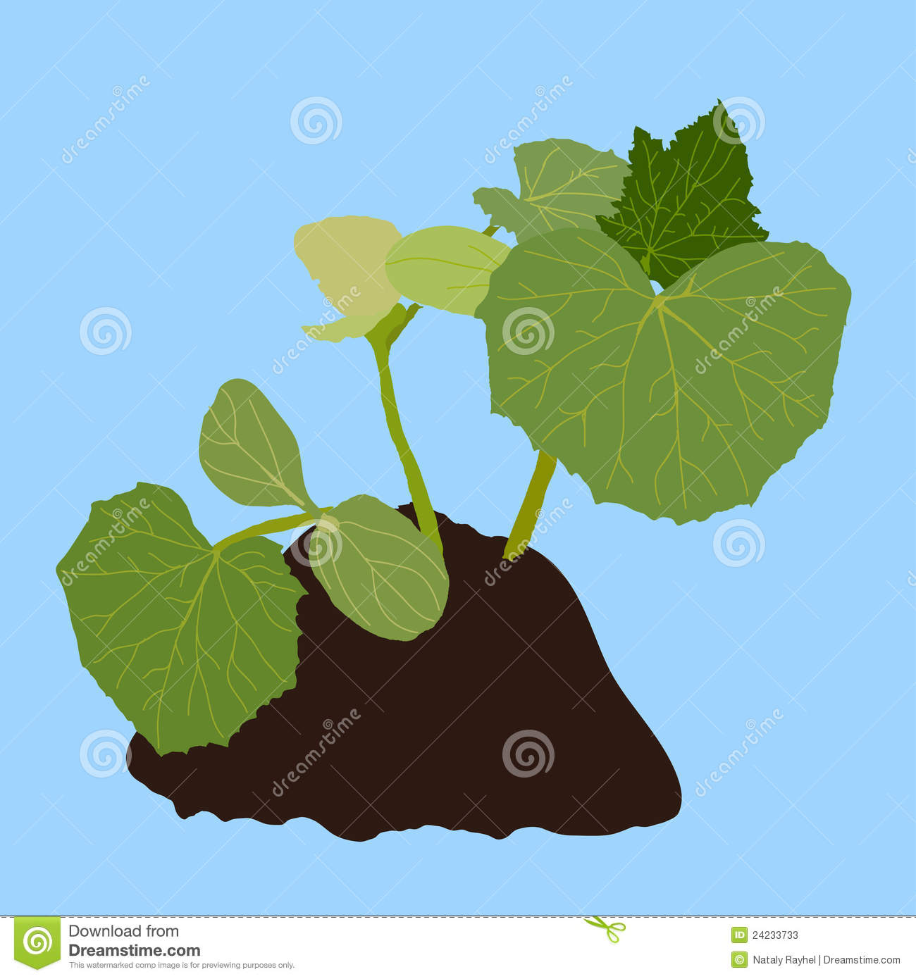 Young plant into soil stock photos image 24233733 for Soil young s modulus