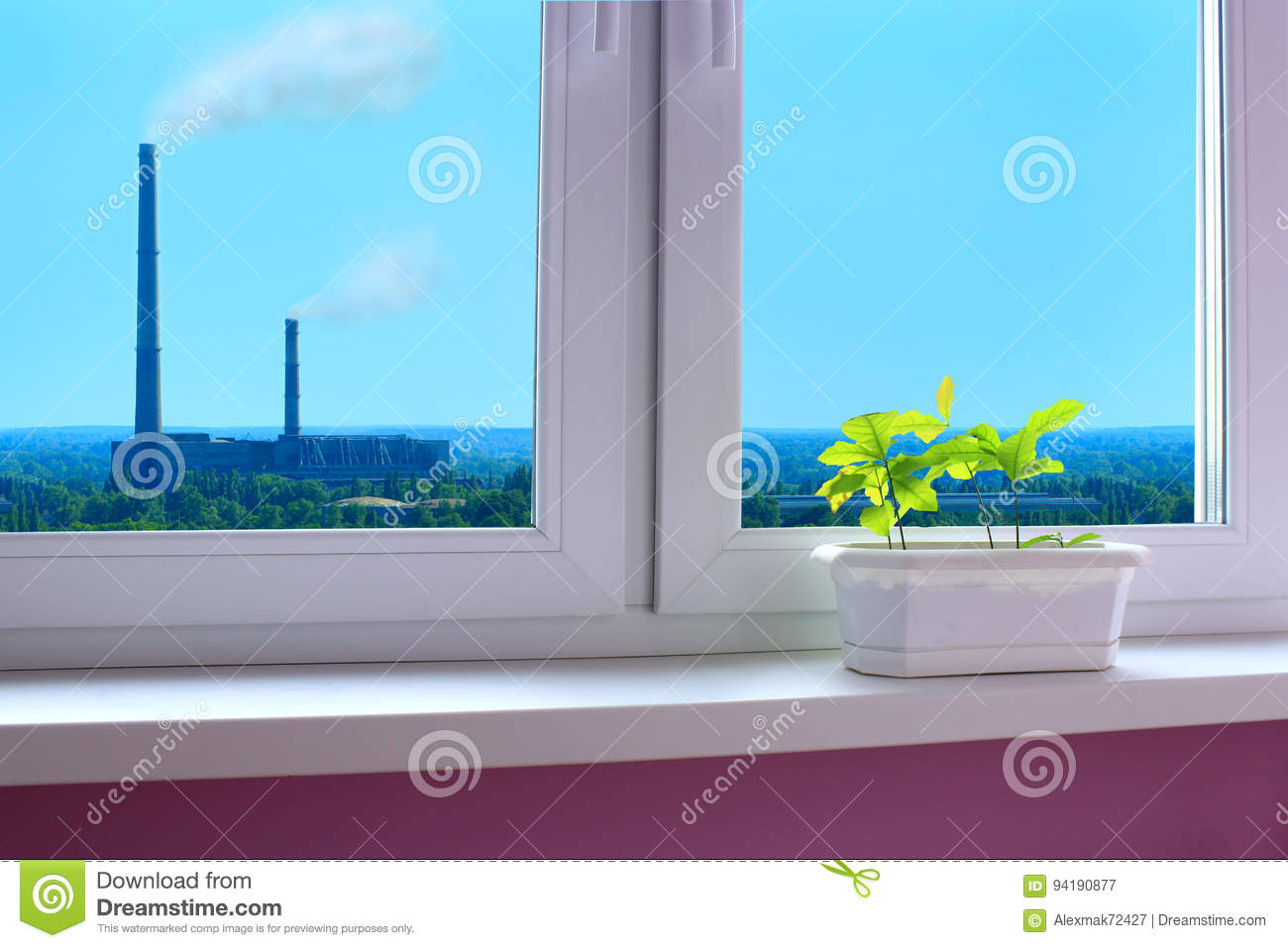 Young plants of oaks on the window-sill and view to the pollution of environment by industry