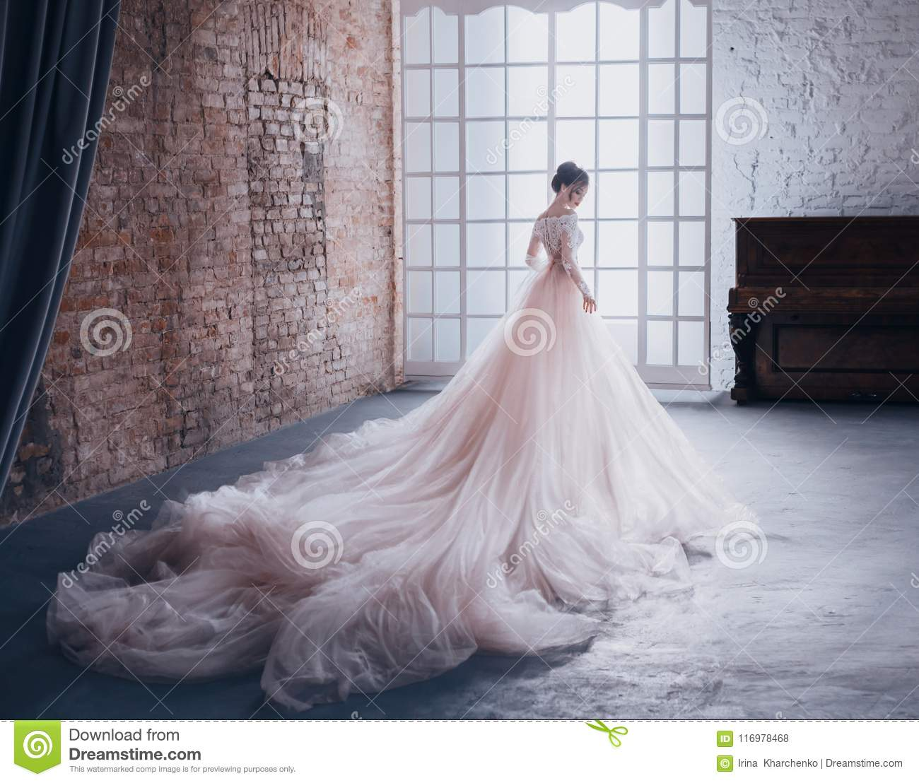 A young princess in an expensive, luxurious dress with a long train stands with her back to the camera, against the