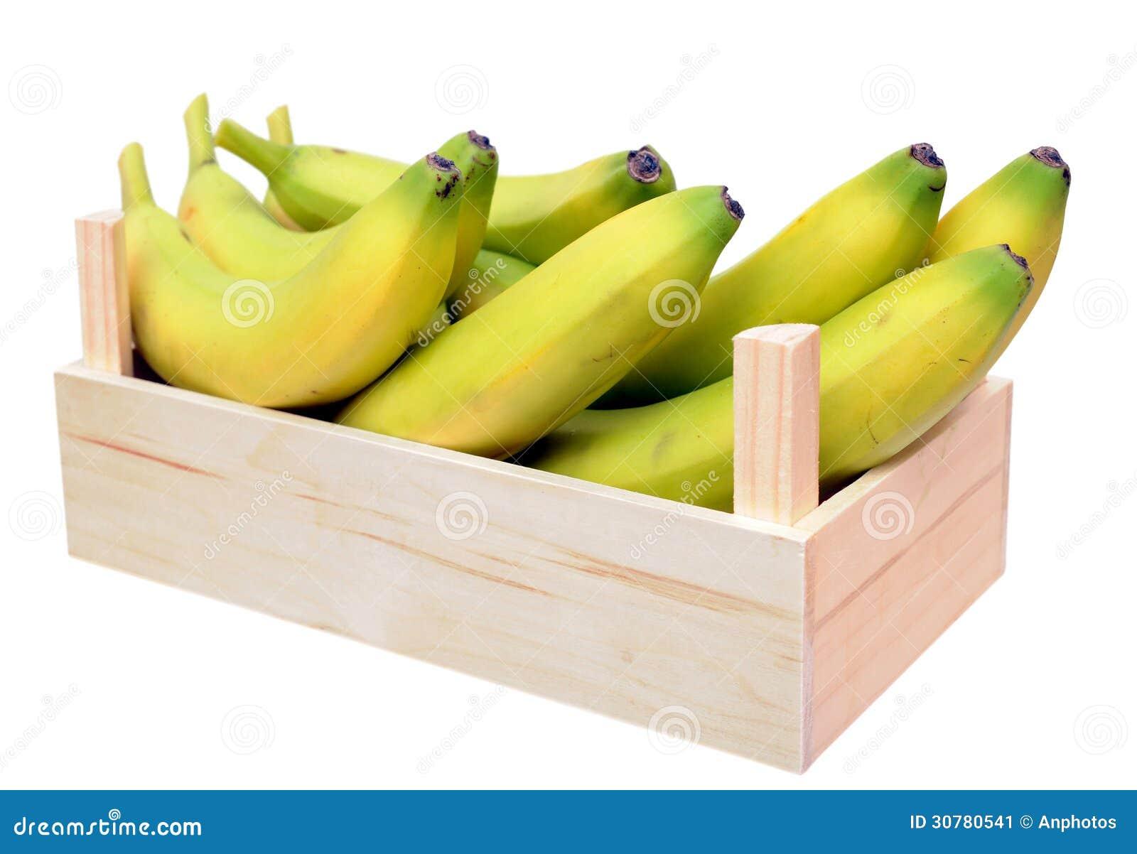 Young Ripe Banana Stock Image Image 30780541