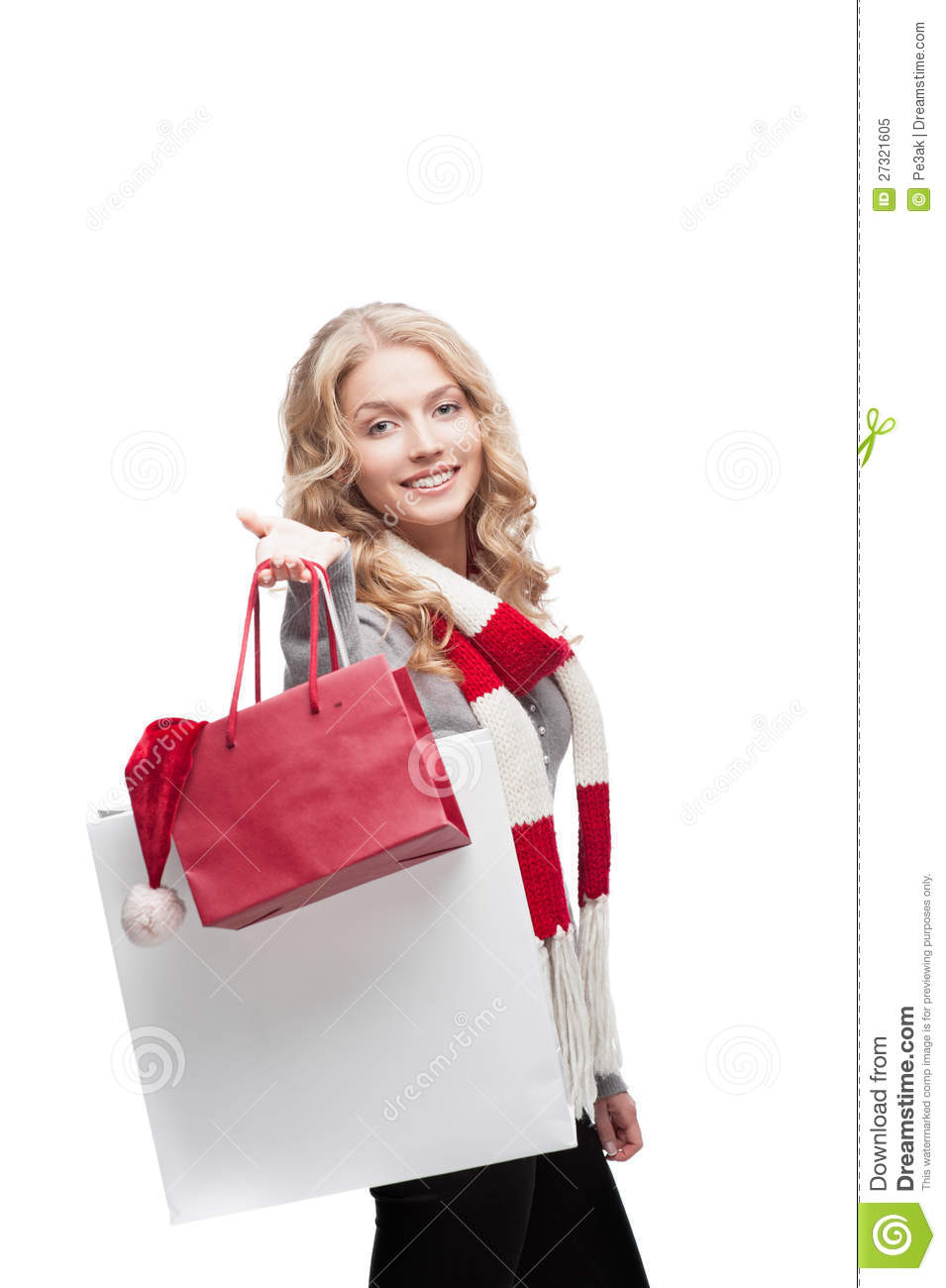 Elegant Young Woman Holding Shopping Bags Stock Photo - Image 24766820