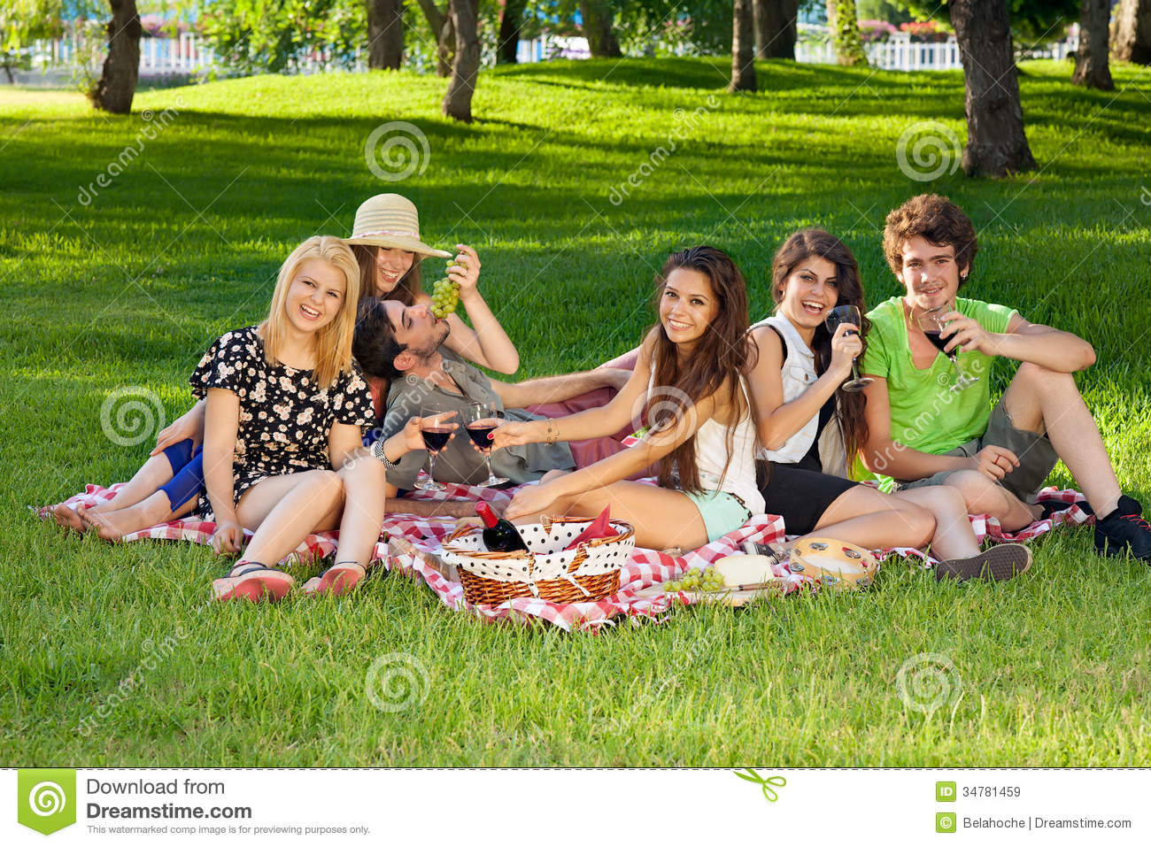 Young Teenage Friends Picnicking In The Park Stock Image