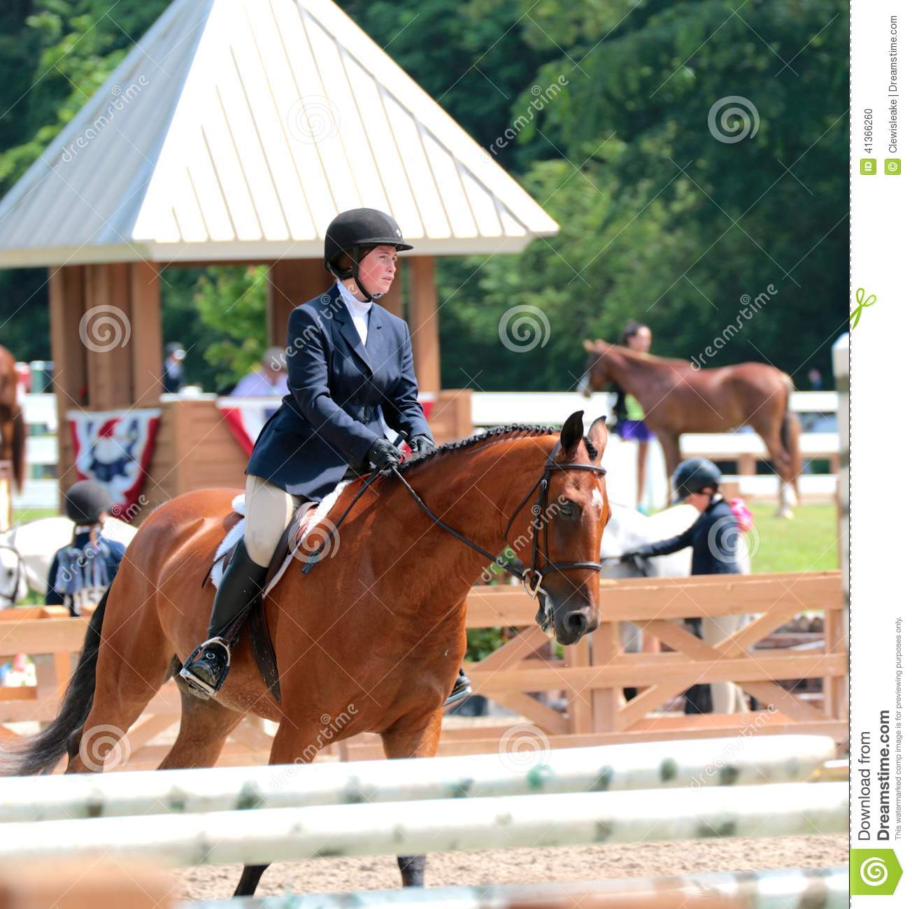 A Young Teenage Girl Rides A Horse In The Germantown Charity Horse Show