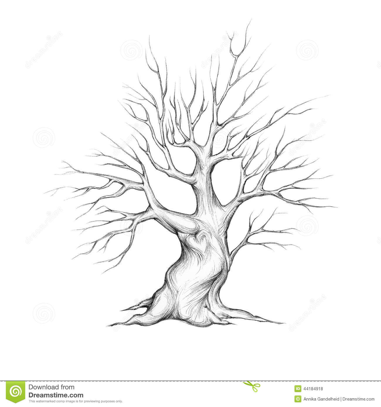 Young Tree With Heart Stock Illustration Image 44184918