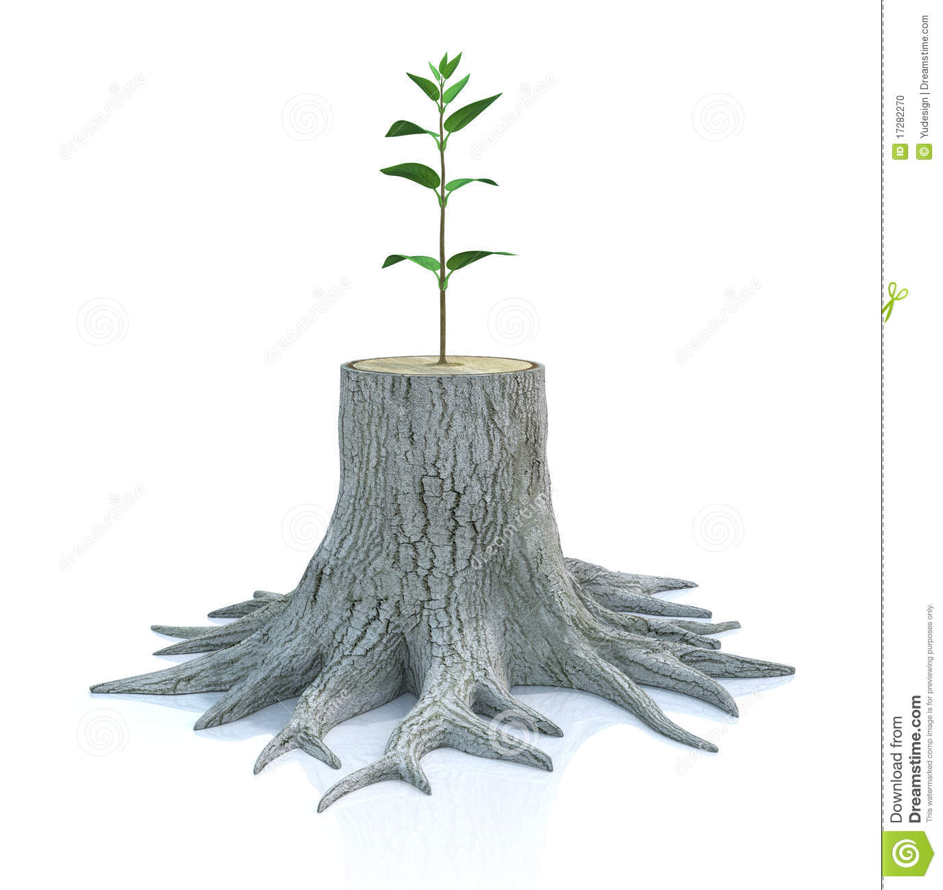 Young Tree Seedling Grow From Old Stump Stock Photo - Image: 17282270