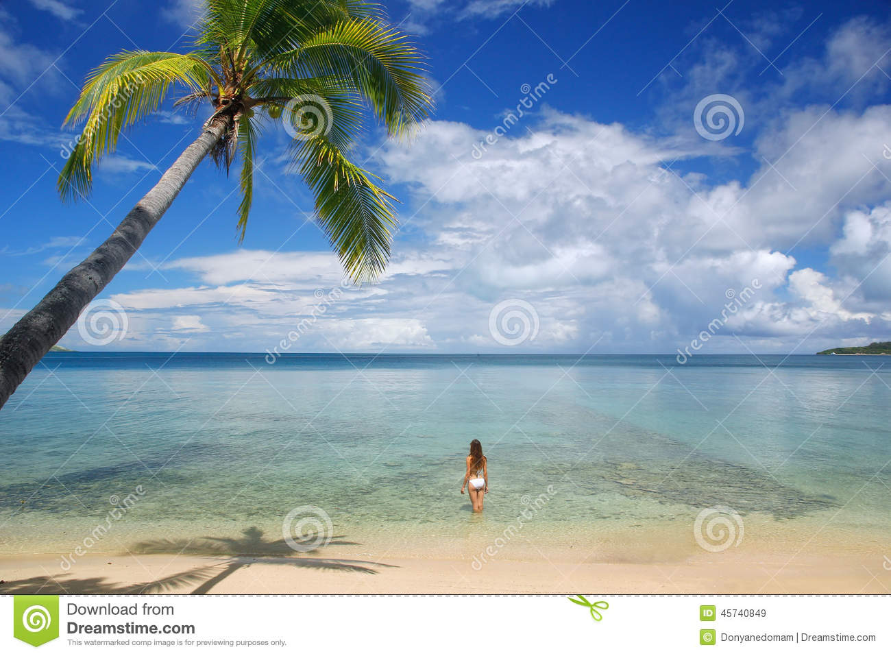 Young Woman In Bikini Standing In Clear Water, Nananu-i-Ra