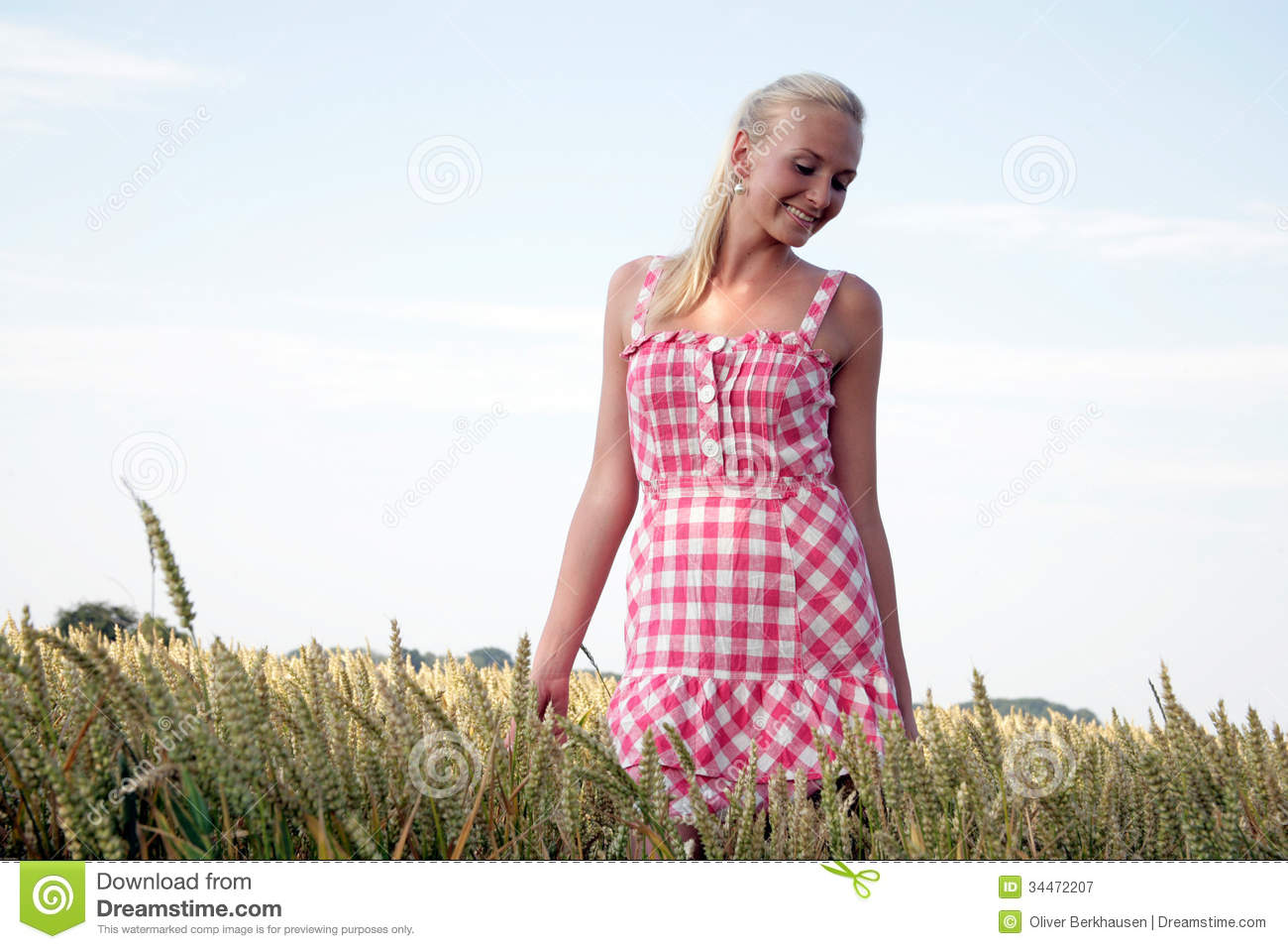 Young Woman In A Corn Field Royalty Free Stock Photography ...