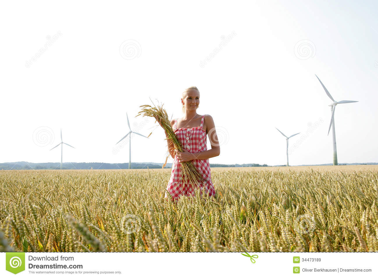 Young Woman In A Corn Field Royalty Free Stock Images ...