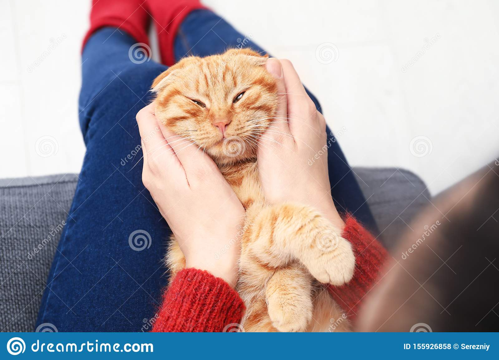 Young woman with cute funny cat at home