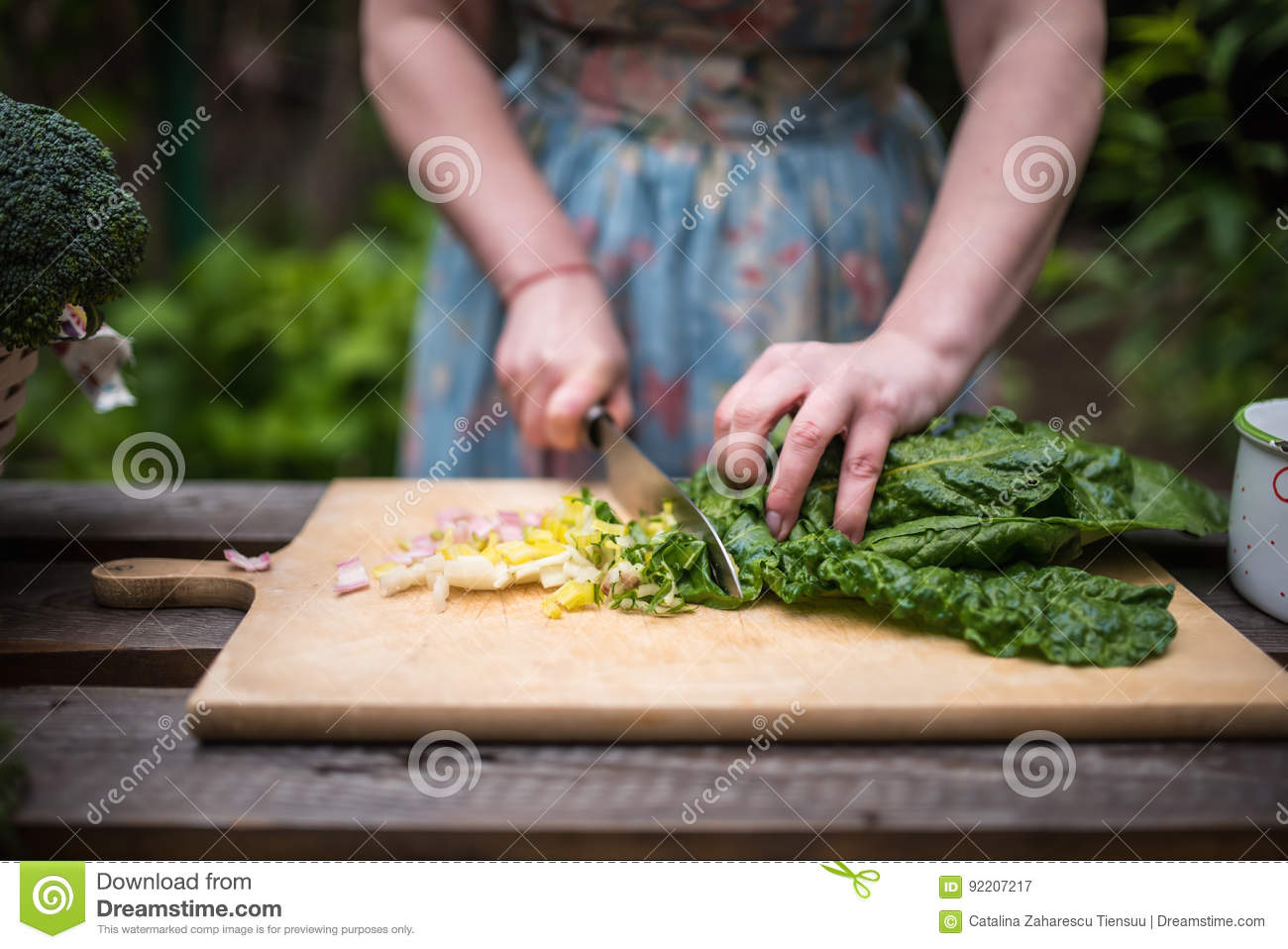 Young woman cutting mangold leaves for a salad