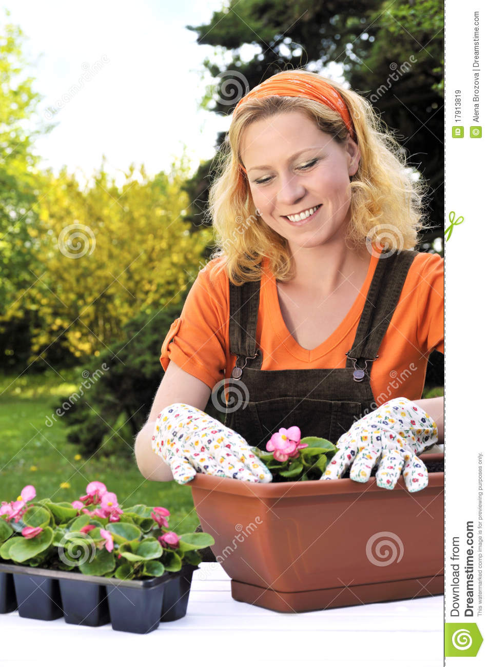 Young Woman Gardening Planting Flowers Royalty Free