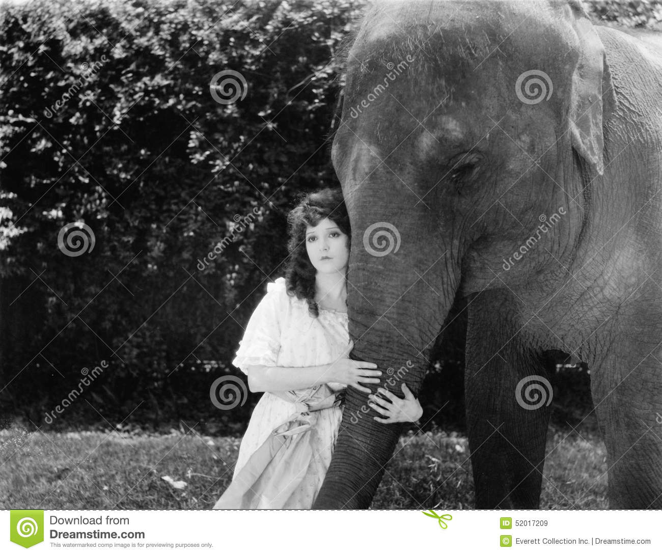 Young Woman Hugging The Trunk Of An Elephant Stock Image