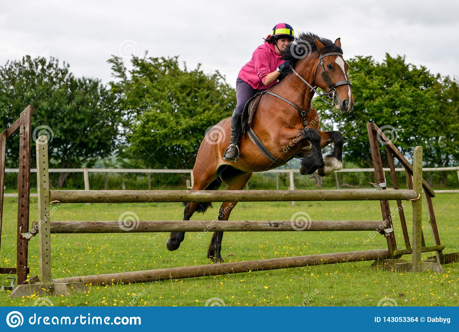 Young Woman Jumping For Joy On Her Horse Stock Photo