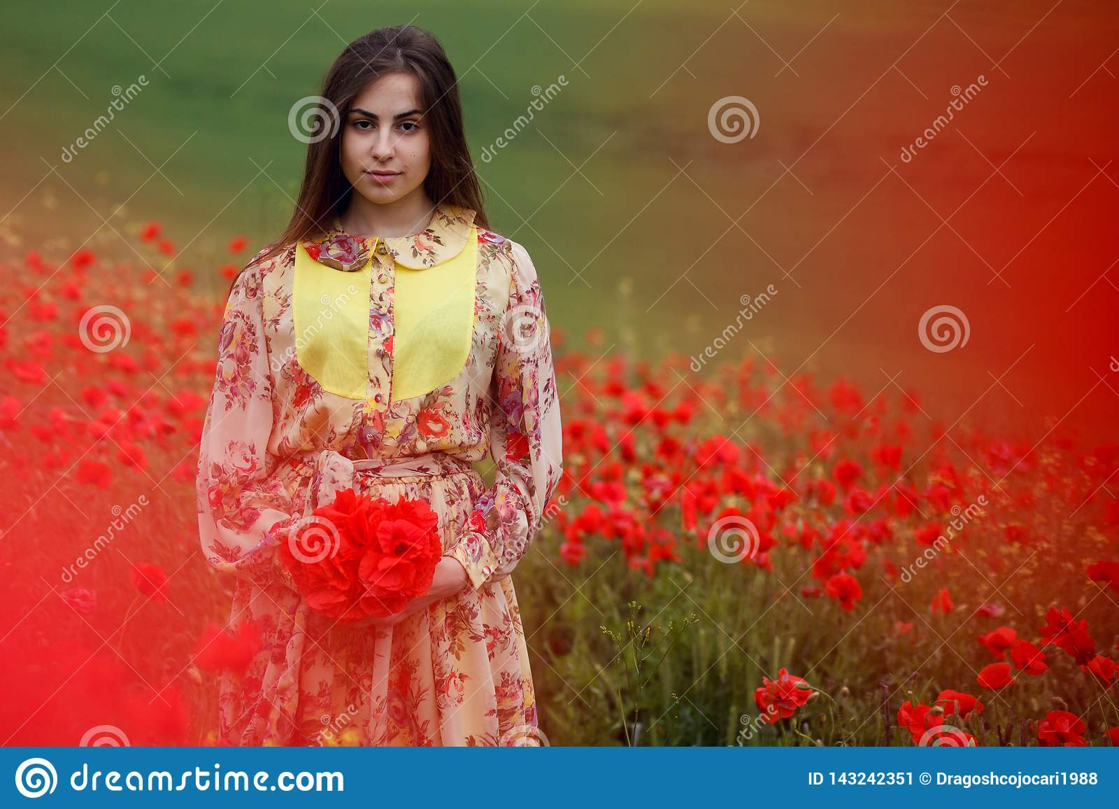 Beautiful portrait of a young long brown haired woman, dressed in a floral dress, standing in a red poppies field
