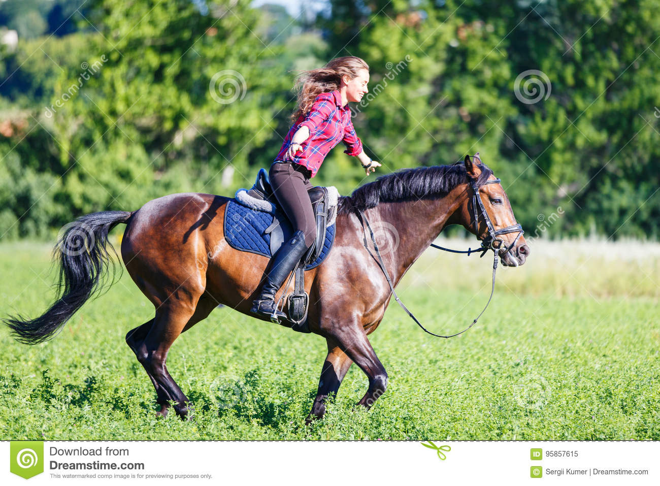 young woman rides bay horse without holding bridle stock image