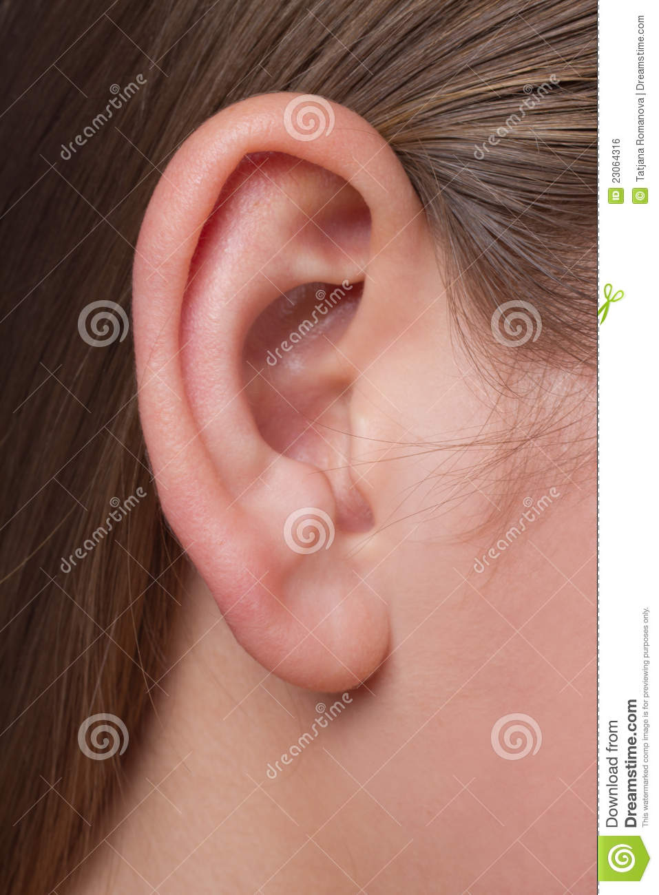 A young woman s ear close-up