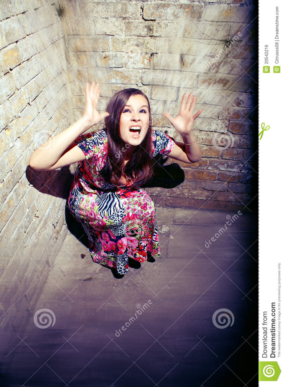 young woman screaming in fear royalty free stock image