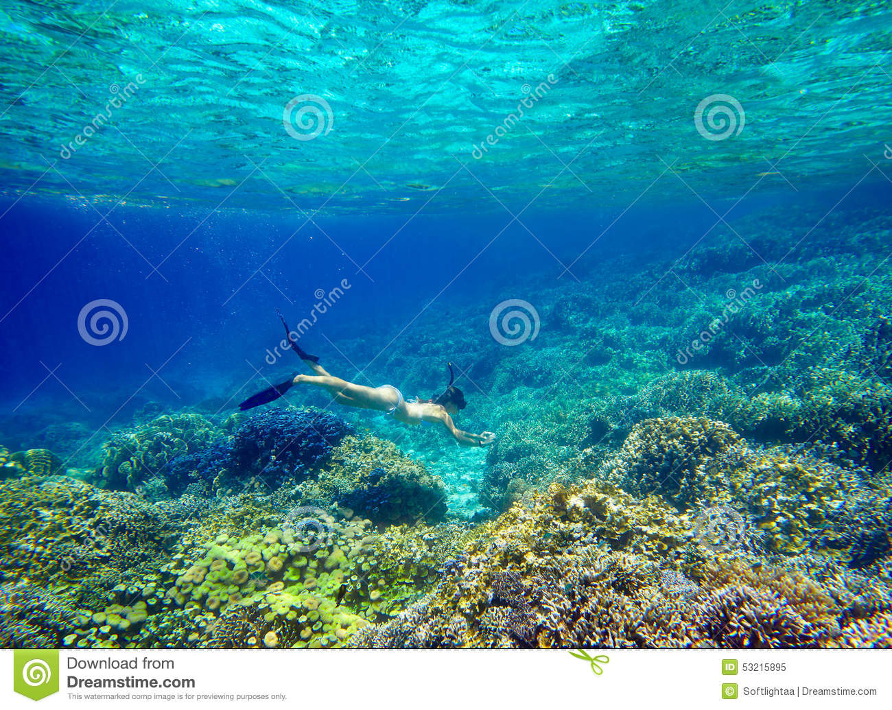 Young woman snorkeling in the beautiful coral reef with lots of