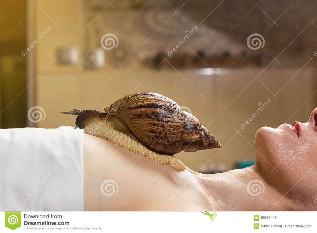 Achatina snails in cosmetology: how to use 85