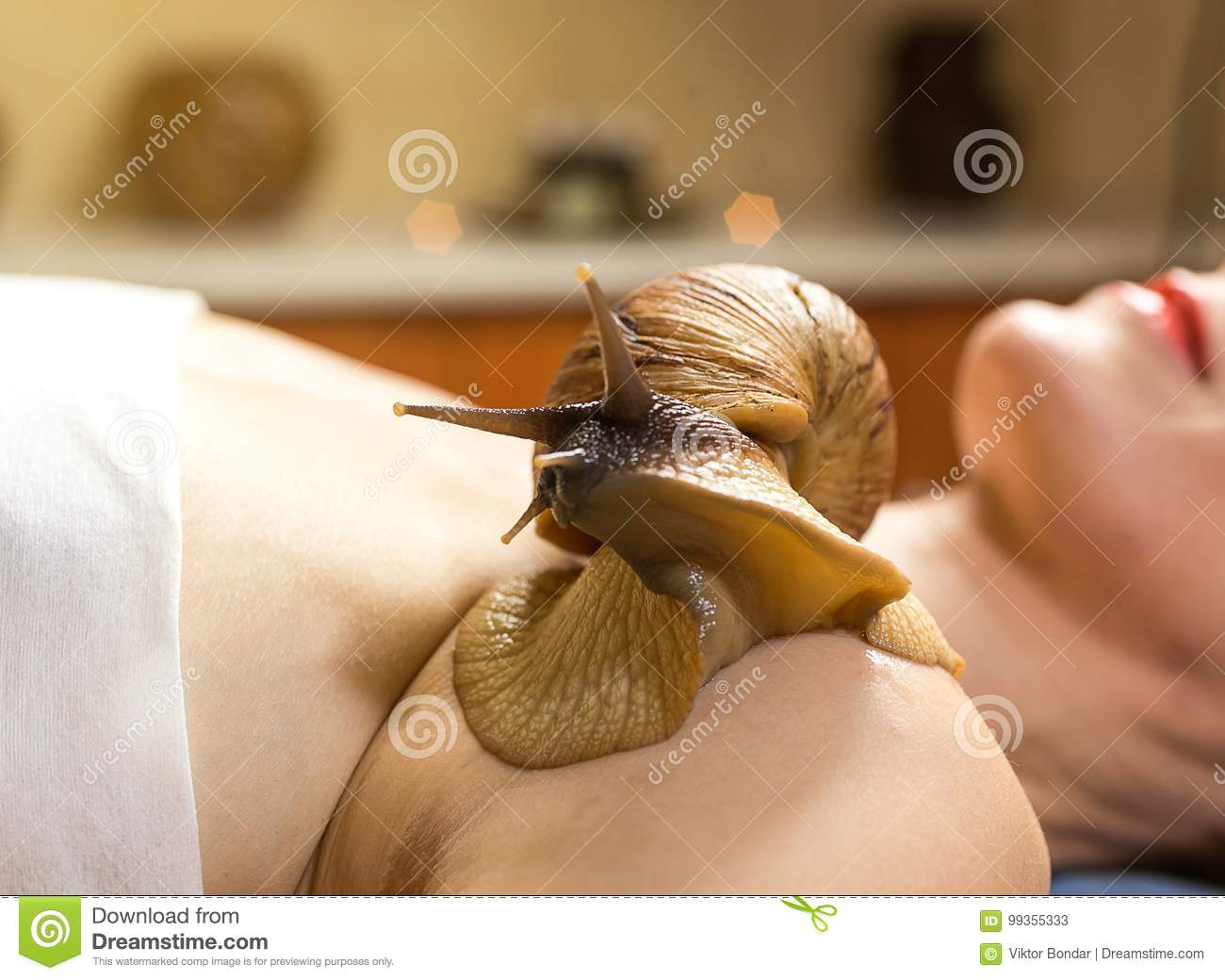 Achatina snails in cosmetology: how to use 99