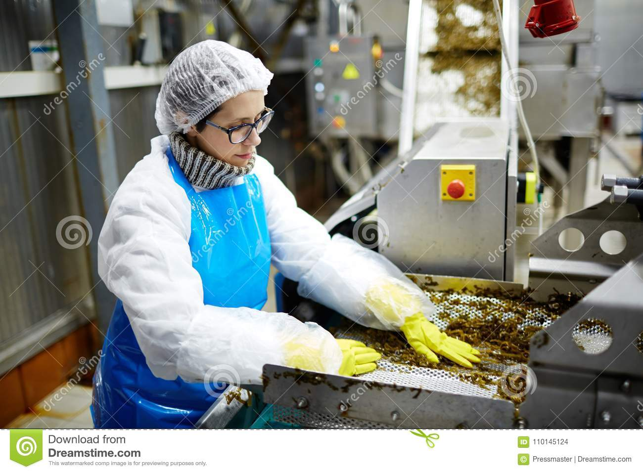 Food Production Factory Staff Stock Photo - Image of