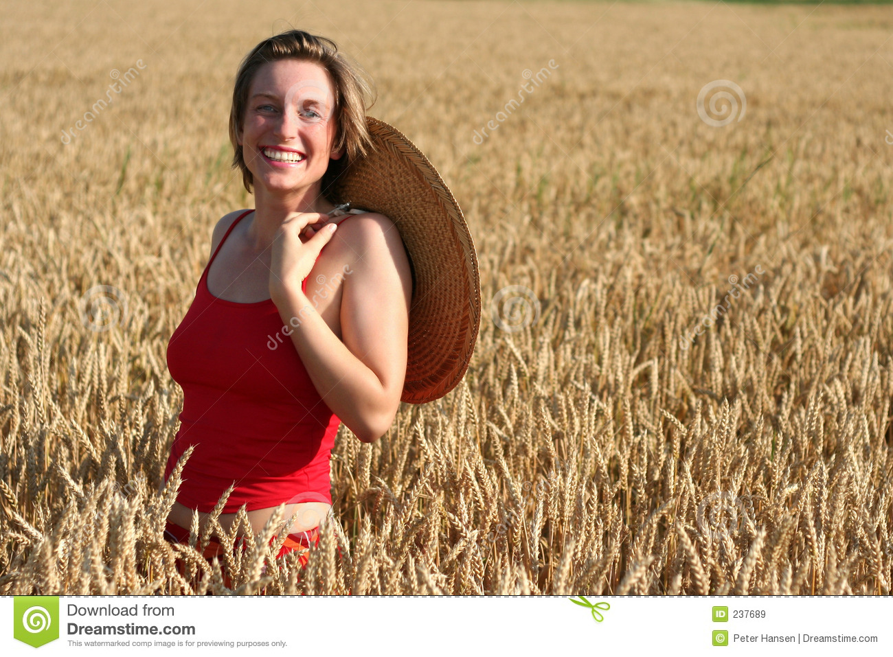 Young woman in wheat field stock image. Image of adult ...