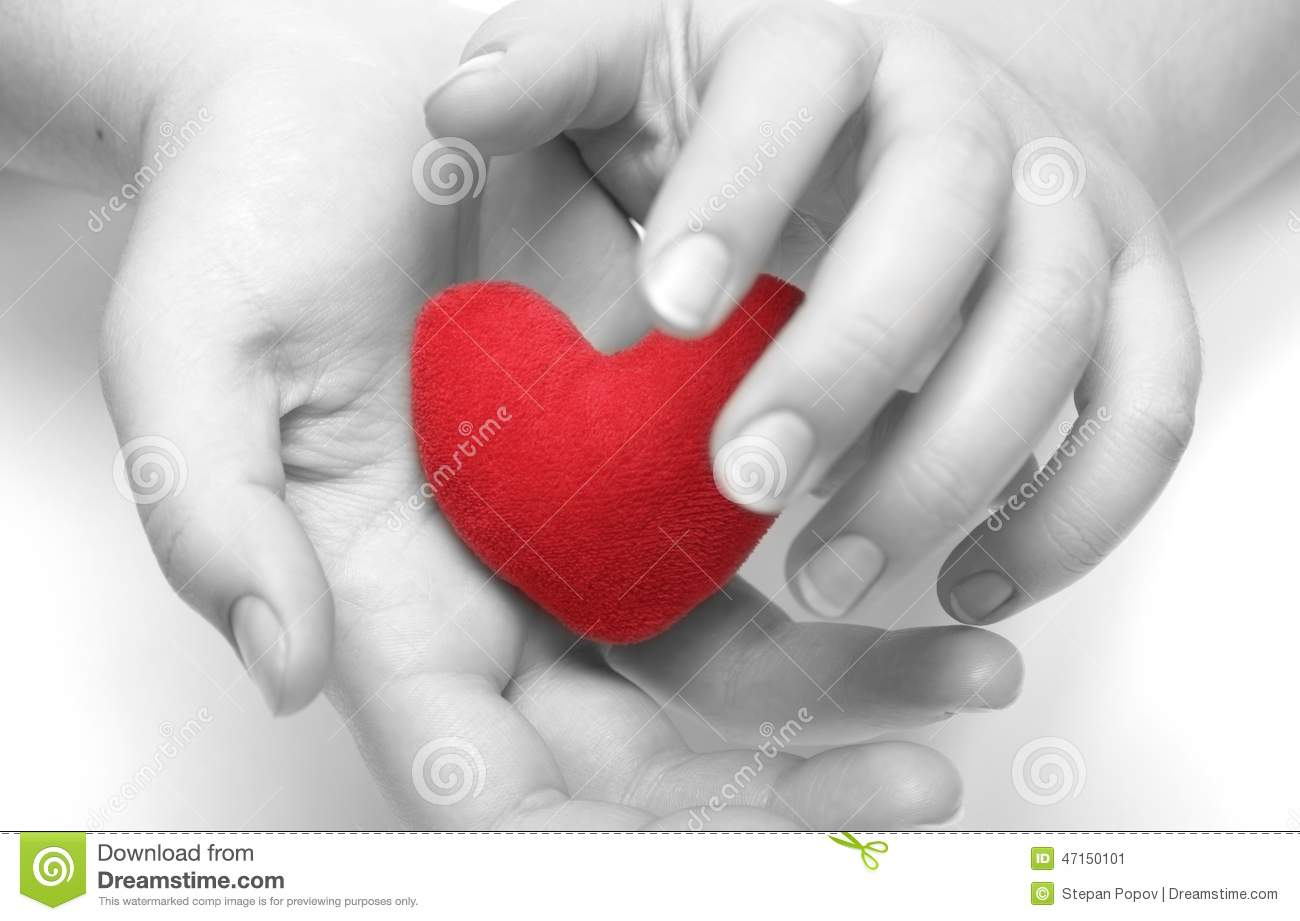 Woman's hands holding a red heart in palms. BW version with purple heart.