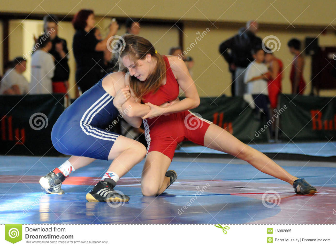 Youth Wrestling Editorial Image Image 16982865