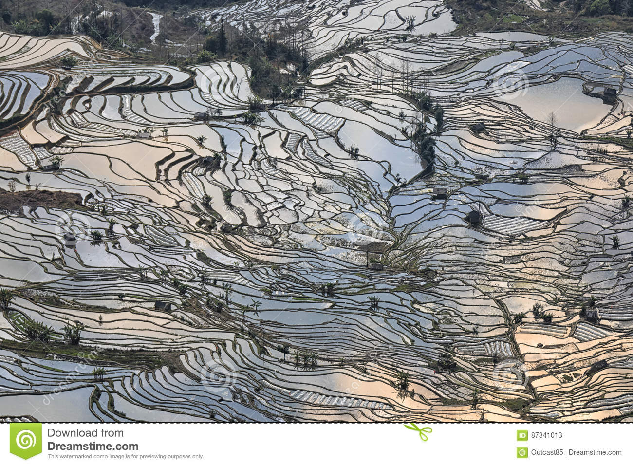 Yuanyang rice terraces in yunnan china one of the latest unesco download comp gumiabroncs Image collections