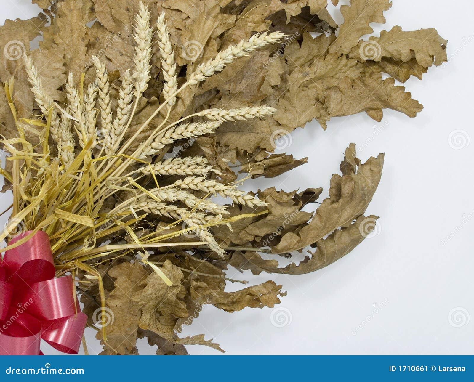 Yule Log Bozic Stock Image Image 1710661