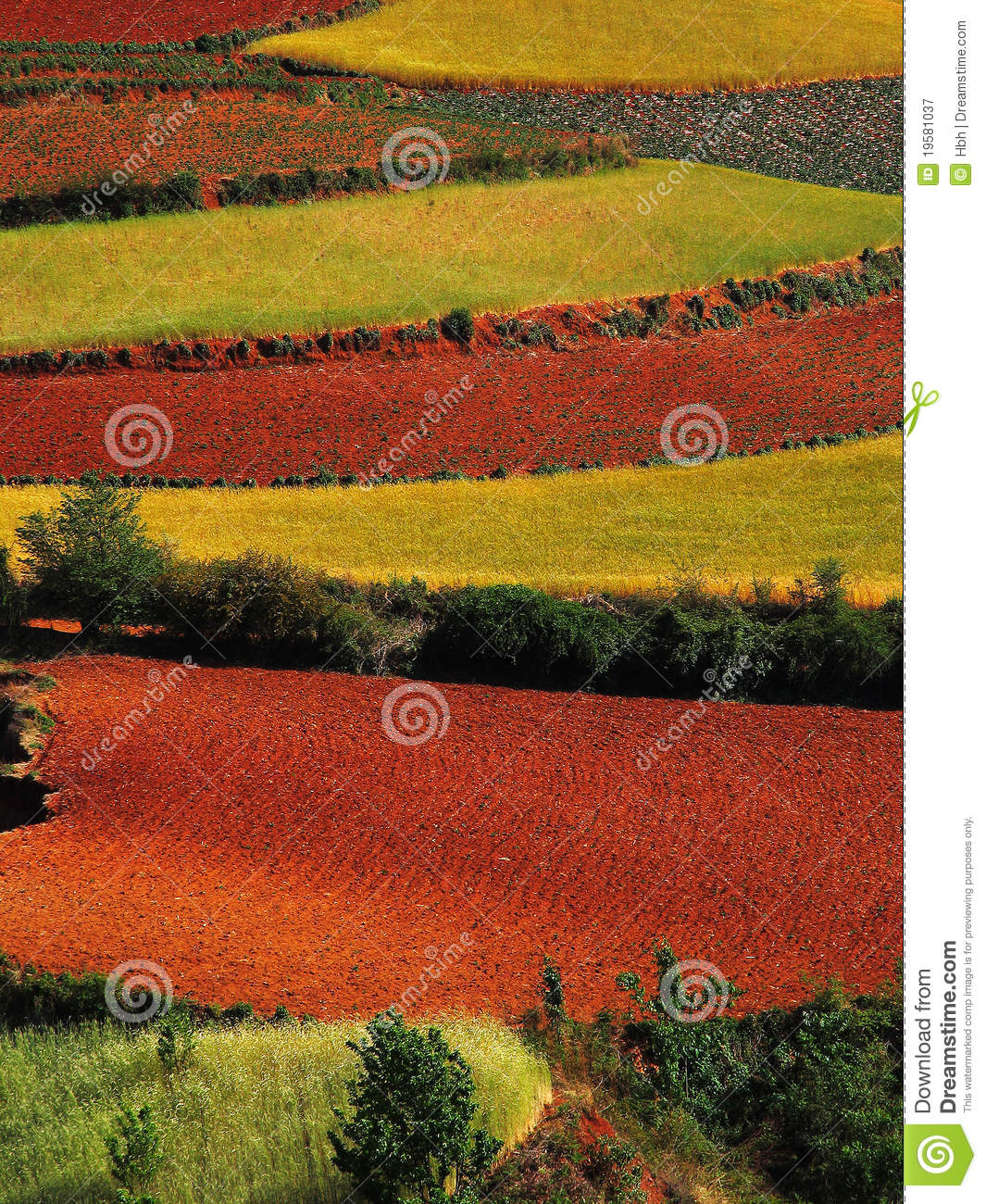 Yunnan red soil dry royalty free stock photography image for What does soil contain