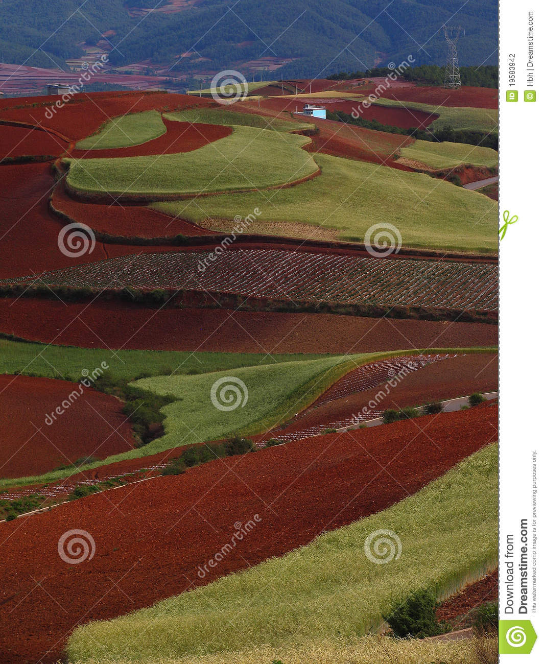 Yunnan red soil dry stock photography image 19583942 for What does soil contain