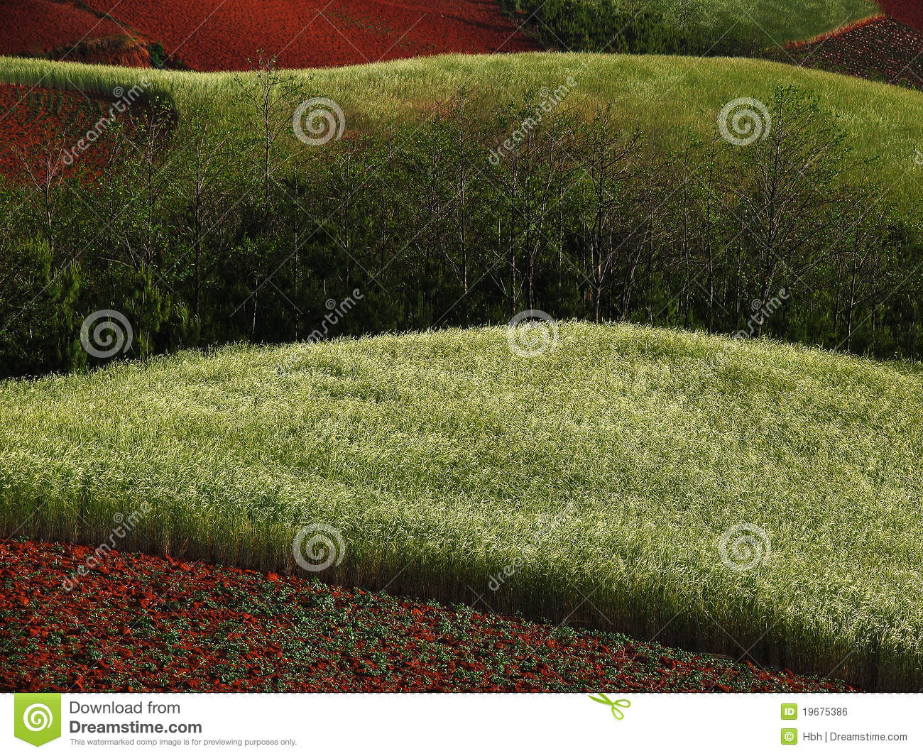 Yunnan red soil dry royalty free stock image image 19675386 for What soil contains