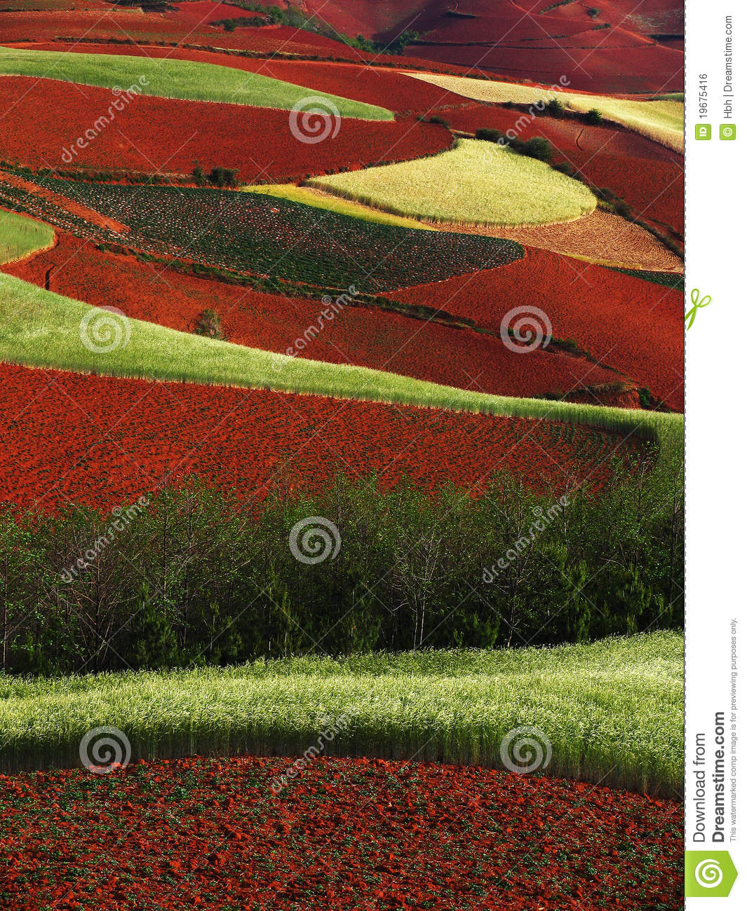 Yunnan red soil dry royalty free stock image image 19675416 for What does soil contain
