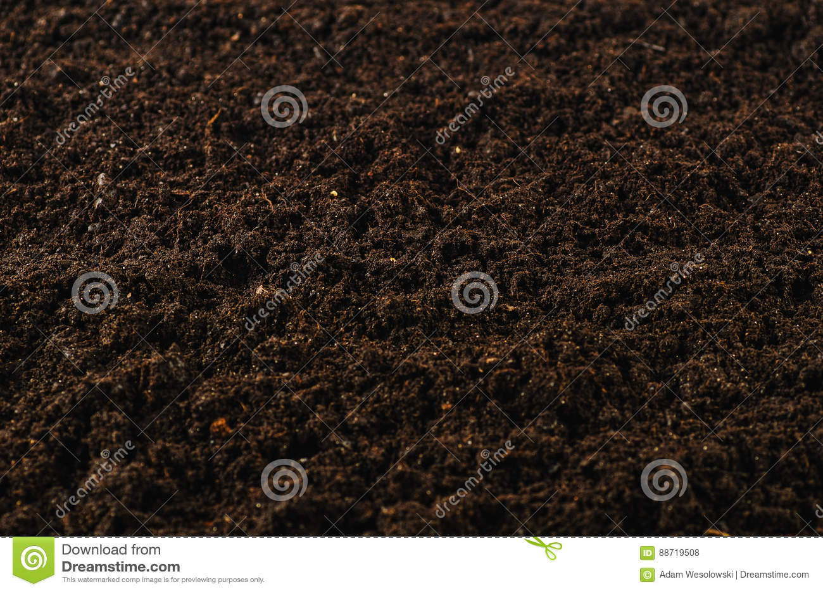 Żyznego ogród ziemi tekstury tła odgórny widok