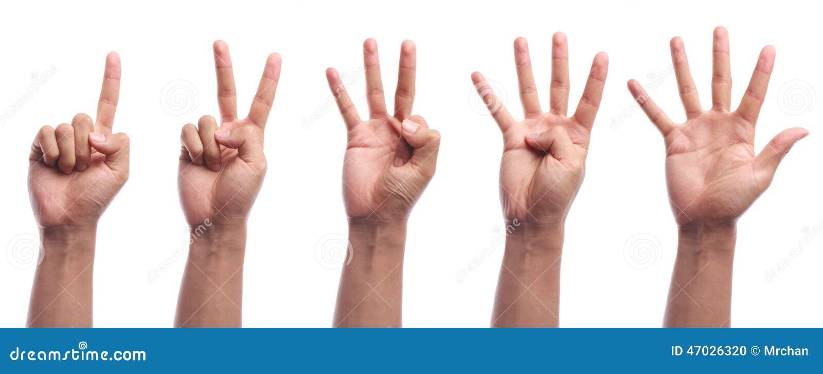 Zählungshandzeichen mit einen bis fünf Fingern lokalisiert