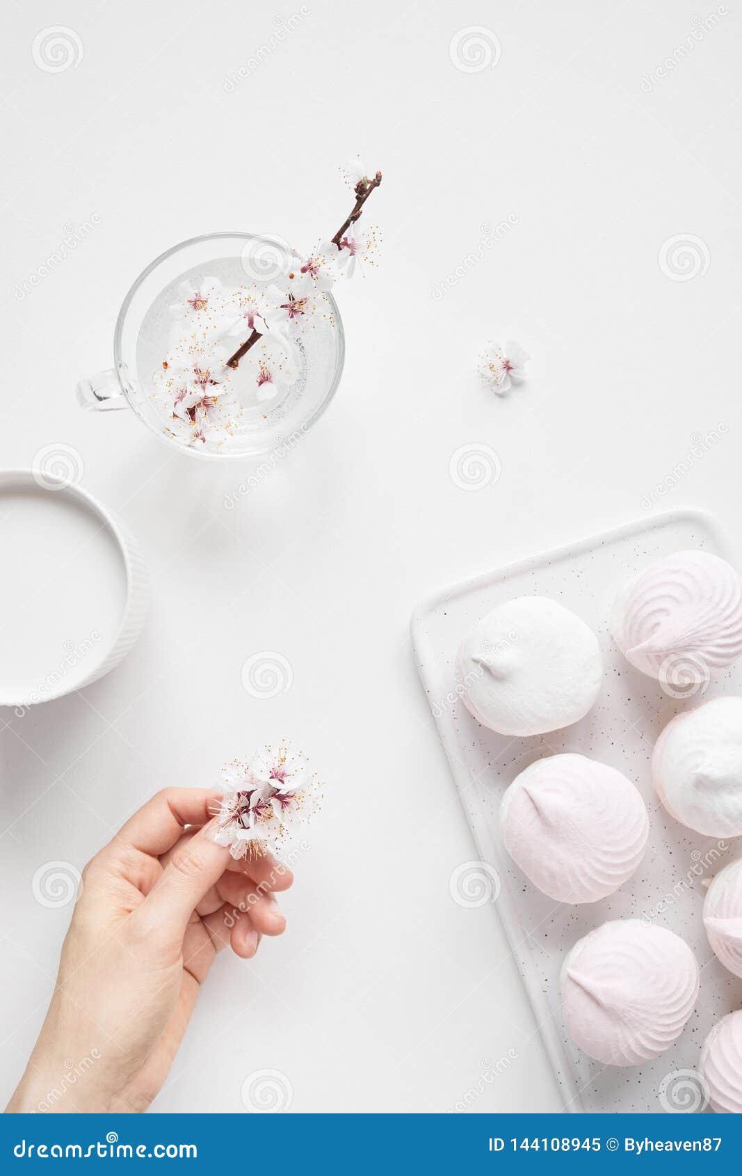 Zéfiro e flores no branco liso