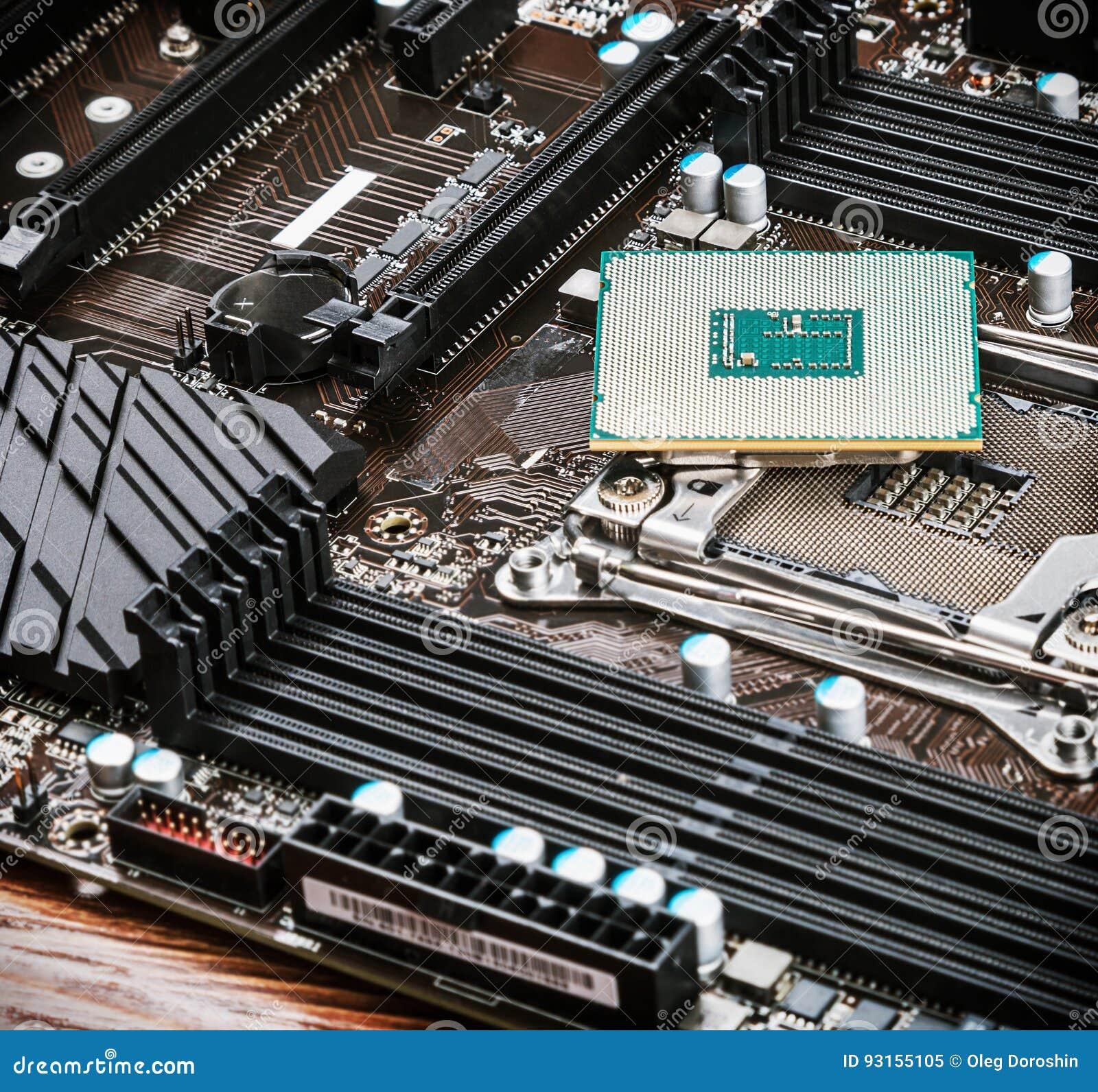 Zócalo y procesador de la CPU